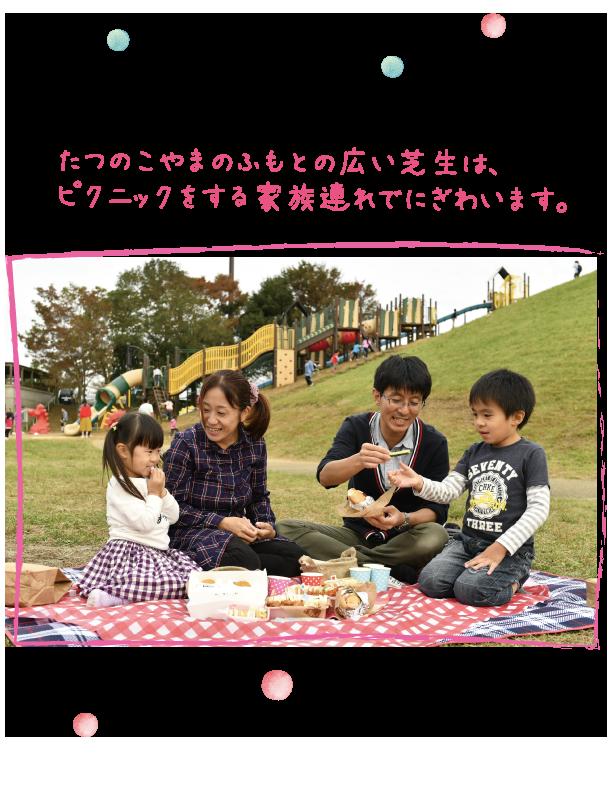 たつのこやまのふもとの広い芝生は、ピクニックをする家族連れでにぎわいます。