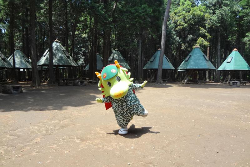 龍ケ崎市森林公園とまいりゅう
