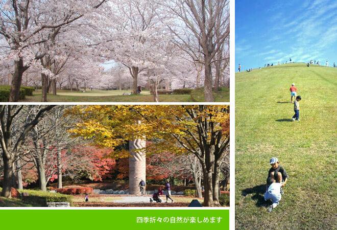 四季折々の自然が楽しめます