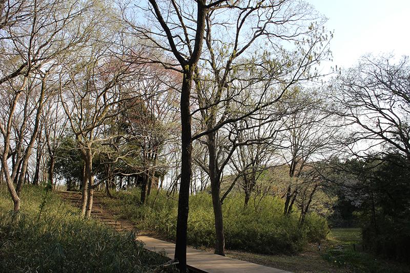 蛇沼公園散策路