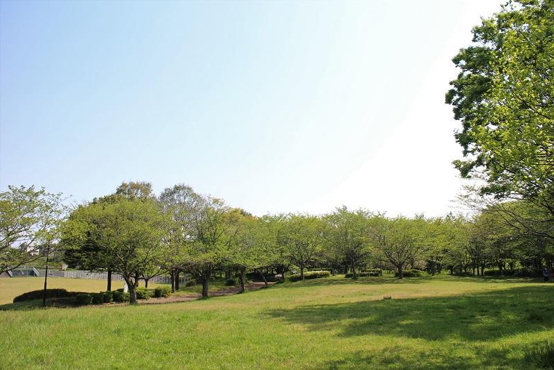 北竜台公園芝生広場