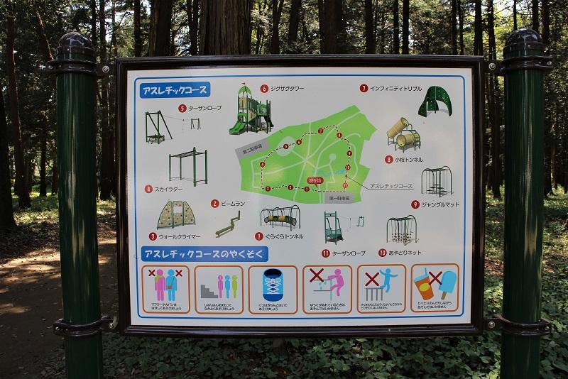 森林公園アスレチック紹介