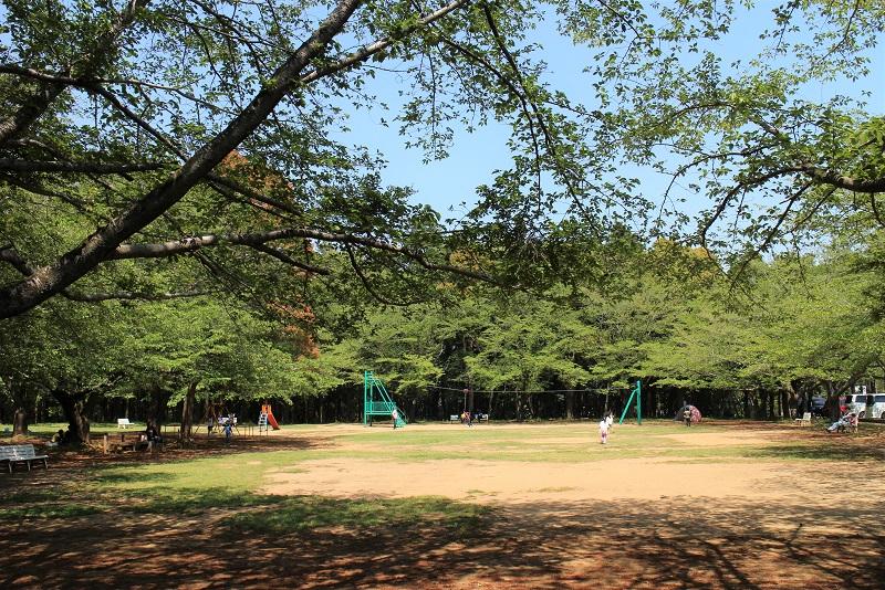 森林公園芝生広場