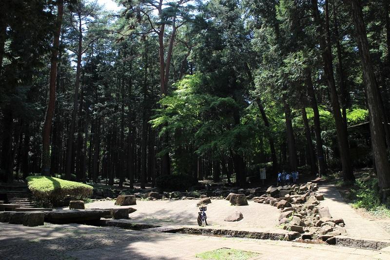 森林公園水辺