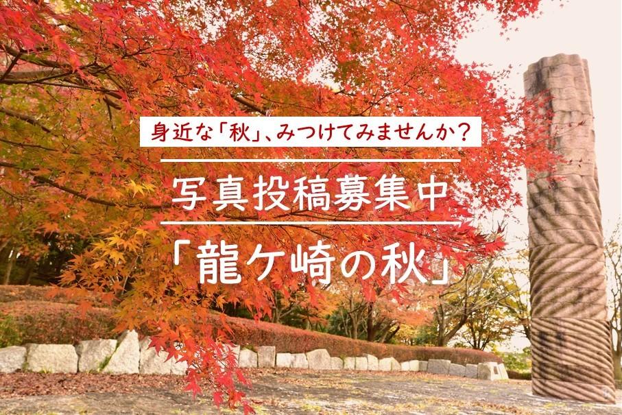 【投稿募集】龍ケ崎の秋を写真で投稿しよう!2020